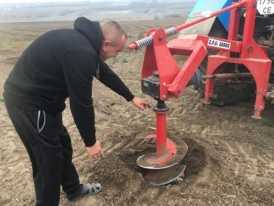 Чотири тонни горіхів з гектара: на Буковині посадили перший сад фундука