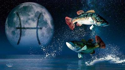 Гороскоп на 14 листопада: на Риб та Скорпіонів очікують незабутні емоції