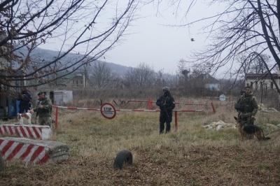 Шукають цигарки, затримують контрабандистів: як собаки допомагають прикордонникам Буковини