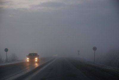 Як уберегтися від аварій під час туману: поради водіям від патрульних Буковини