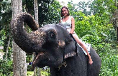 Покататись на слоні і назбирати чаю: чернівчанка поділилась враженнями про Шри-Ланку