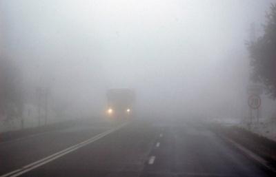 Штормове попередження. На Буковині очікується туман і сильний вітер