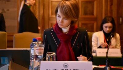 У Гаазі почалися перші слухання справи щодо захоплення українських кораблів