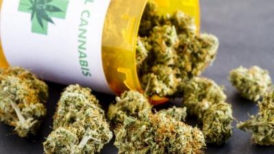 В Америці з'явилася нова вакансія - дегустатор марихуани, за яку платять 3 тисячі доларів