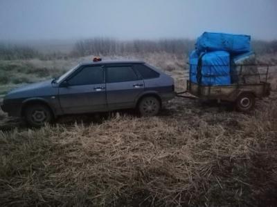 На Буковині двоє осіб незаконно перемістили через кордон значну партію саджанців троянд