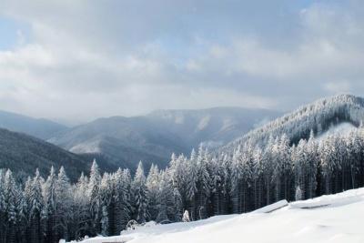 У горах Буковини прогнозують до 13 градусів морозу