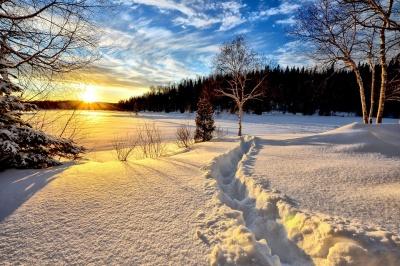 Зими на Буковині за десять років потеплішали на 1,5 градуса