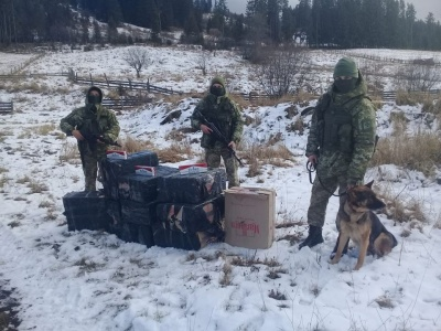 На Буковині службовий собака допоміг прикордонникам виявити сховок з цигарками