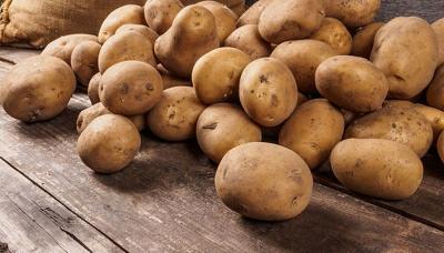 Картопля за рік подорожчала вдвічі - Держстат