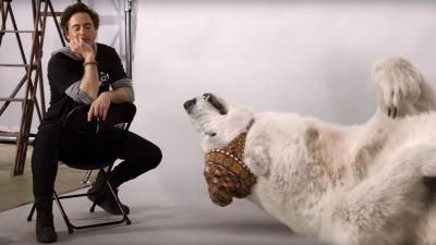 Як тварини проходили проби на ролі: з'явилося кумедне відео з Робертом Дауні-молодшим