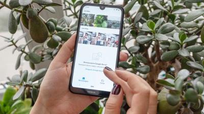 Чернівчан запрошують протестувати мобільний додаток по сортуванню сміття