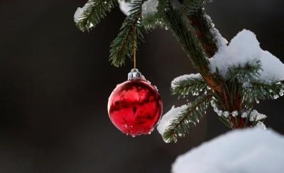 Якою на Буковині буде погода у новорічну ніч: прогноз синоптика