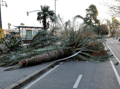 Південь Європи потерпає від ураганів. Загинули щонайменше 8 осіб