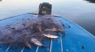На Буковині рибний патруль вилучив з річки кілометр браконьєрських сіток
