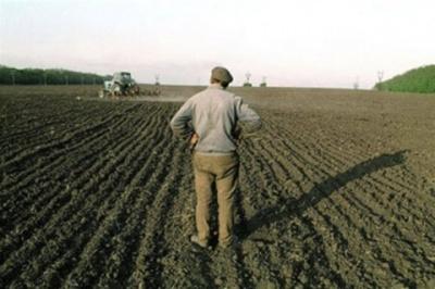 Держгеокадастр: Мораторій на продаж землі після 1 січня залишиться чинним