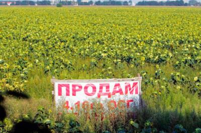 Коли в Україні діятиме мораторій на землю
