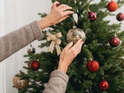 Анекдот дня: про новорічну ялинку