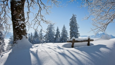 Україну засипає снігом: синоптики дали прогноз погоди на січень 2020 року