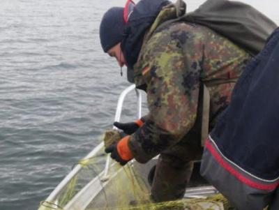 Чернівецька рибінспекція вилучила на Дністрі 1200 метрів браконьєрських сіток