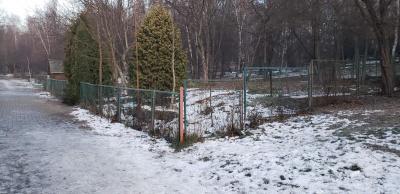 У парку «Жовтневий» в Чернівцях планують обладнати майданчик для вигулу собак