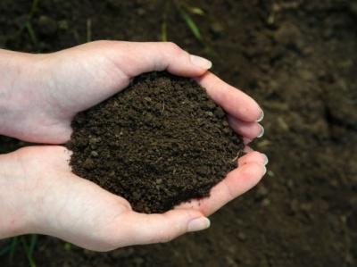 В Україні планують підвищити податок на землю