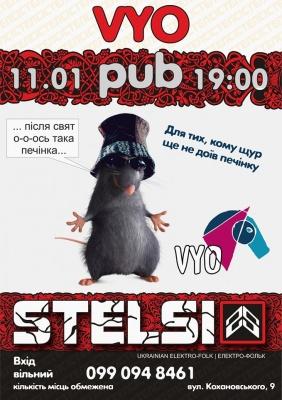 Концерт STELSI