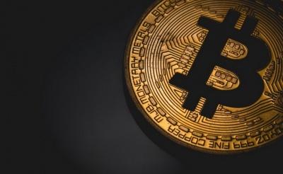 З початку року Bitcoin подорожчав на 20%