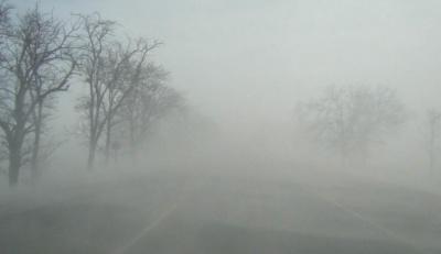 Синоптики попереджають про сильний туман та ожеледицю на Буковині