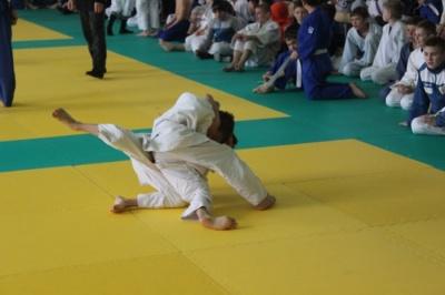 У Чернівцях відбувається чемпіонат області з дзюдо