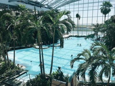 Найбільший аквапарк Європи і музей магії: куди буковинці можуть поїхати на відпочинок в лютому