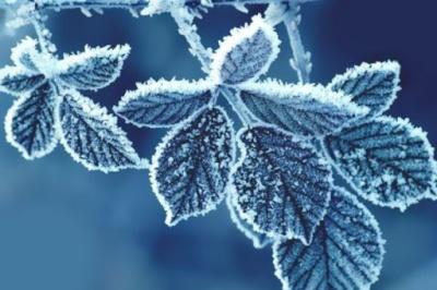 Буковинців попередили про різке погіршення погоди: буде 13 градусів морозу