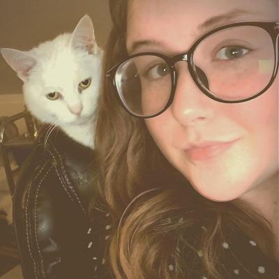 Кішка у куртці: користувачів мережі розвеселила нова оптична ілюзія