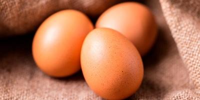 Найкорисніші властивості курячих яєць