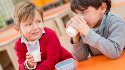 У школи Буковини хочуть постачати молоко місцевих виробників