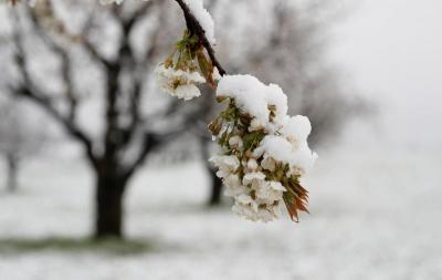«Морози будуть навіть вдень»: синоптик здивував прогнозом погоди на весну