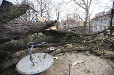 Польща постраждала від буревію