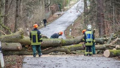 """Німеччина потерпає від урагану """"Сабіне"""". Є жертви"""