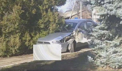 ДТП на Буковине: Mitsubishi снес елку у райсовета, водитель другого авто убежал - видео