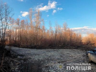 На Буковині невідомі вирубали лісосмугу й проклали дорогу – фото