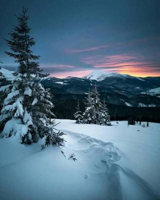 Гідрометцентр: У Карпатах знову випало понад метр снігу