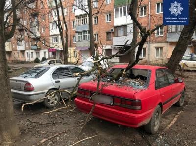 Наслідки буревію на Буковині та призначення трьох голів РДА. Головні новини 24 лютого