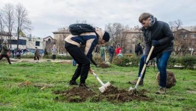 В Україні у березні планують висадити 10 мільйонів дерев
