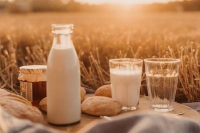 У дитсадки і школи області постачатимуть буковинське молоко