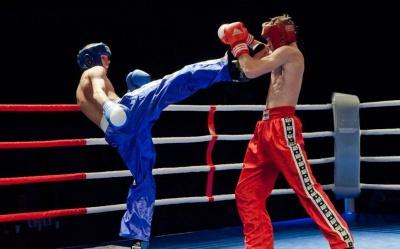 Буковинські кікбоксери посіли призові місця на міжнародному турнірі