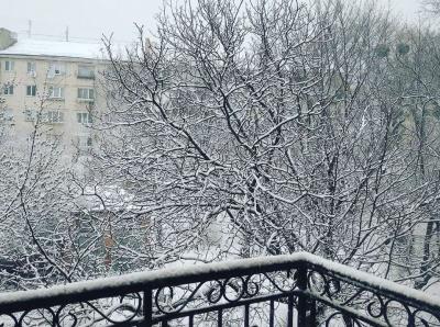 Чернівці засипало снігом - фото