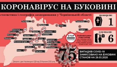 Коронавірус атакує Буковину: що відомо на ранок 30 березня