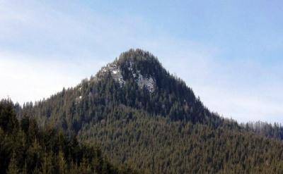 Невідома Буковина: гора, де ростуть цілющі рослини від десятків хвороб