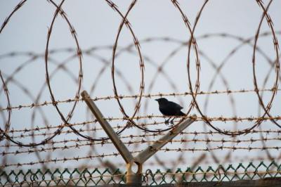 В Україні через коронавірус можуть почати випускати в'язнів: у Мін'юсті підтримали ідею