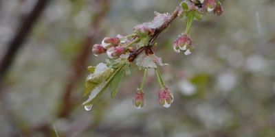 На українців чекає похолодання та дощі