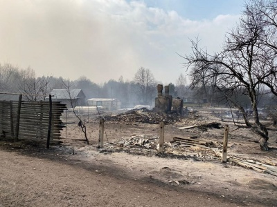 На Житомирщині лісові пожежі перекинулися на села